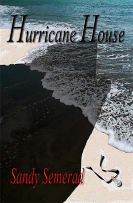 "the book by sandy semerad ""hurricane house"" cover"
