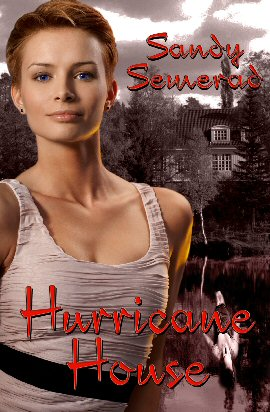 hurricane house book cover